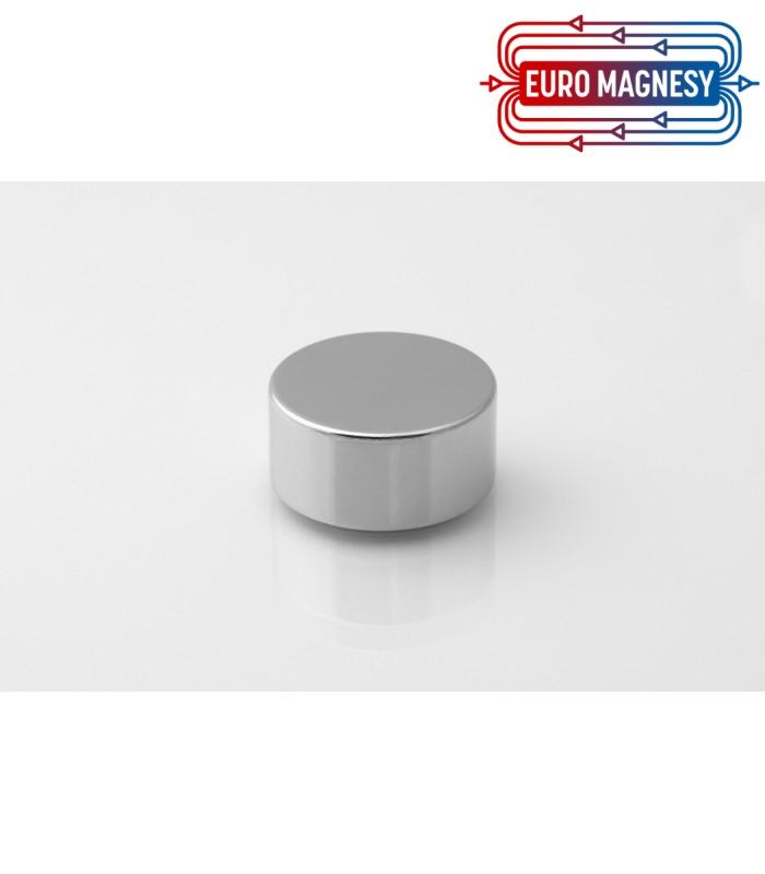 Neodymium disc magnet 25x12 thick N38