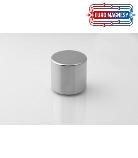 Neodymium disc magnet 33x30 thick N42