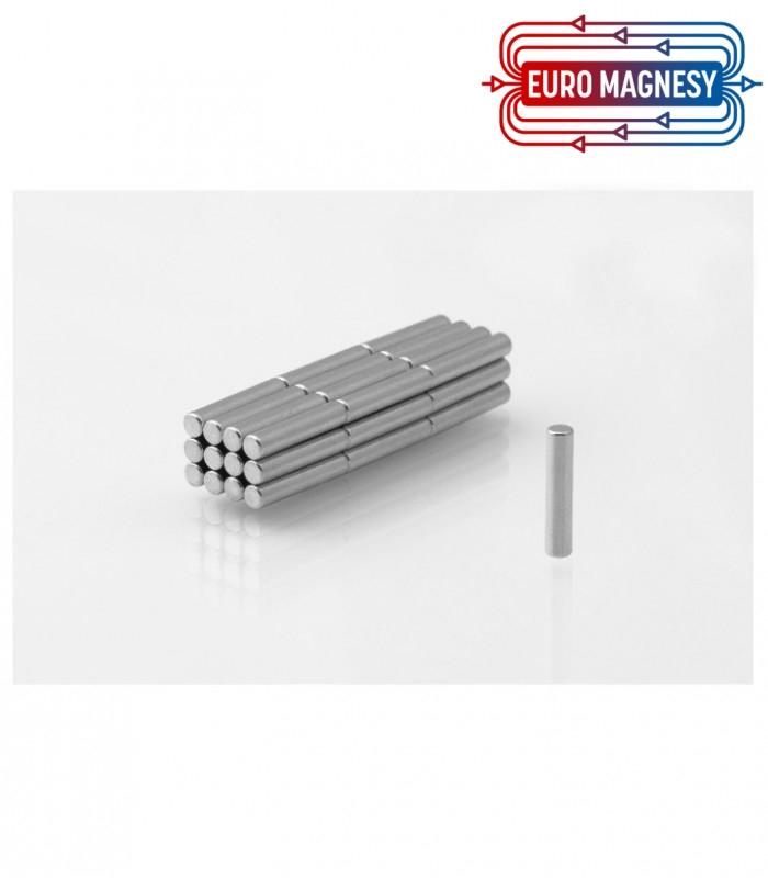 MW 2x10 N38 Magnes neodymowy