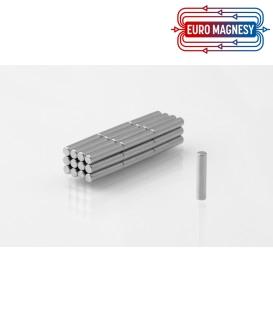 Neodymium disc magnet  3x10 thick N38